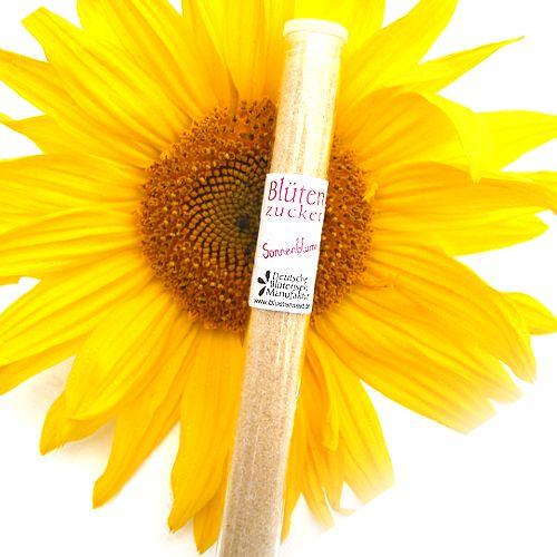 Bio-Blütenzucker Sonnenblumenblüte